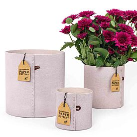 Paper Pot Medium Size - Assorted Colours