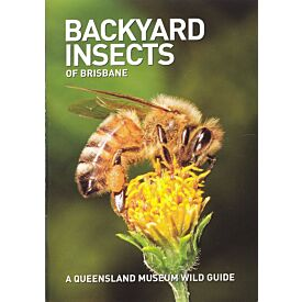 Pocket Guide: Backyard Insects of Brisbane