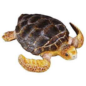 Loggerhead Turtle CollectA Model