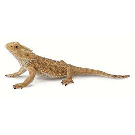 Bearded Dragon Lizard CollectA Model