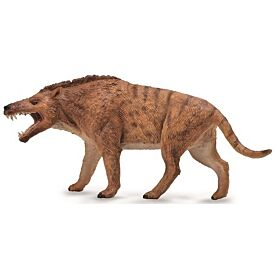 Andrewsarchus CollectA Model