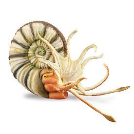 Pleuroceras Ammonite CollectA Model