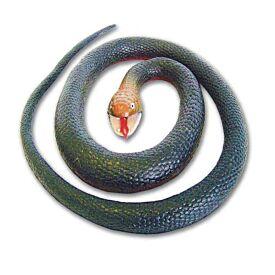 Australian Rubber Snake