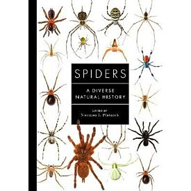 Spiders of the World A Natural History