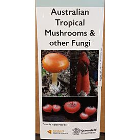 Australian Tropical Mushrooms and other Fungi