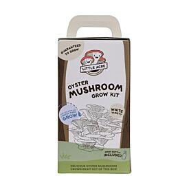 White Oyster Mushroom Grow Kit